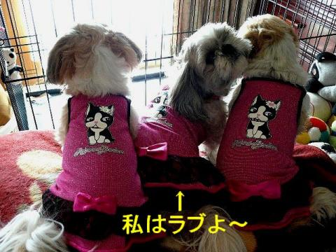 oyako_20080405_2