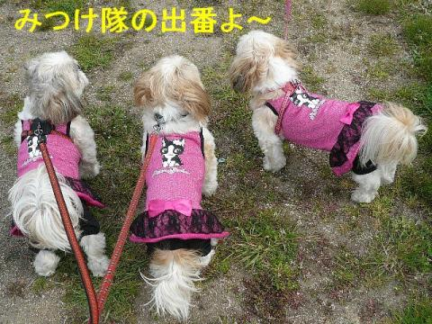 oyako_20080406_1