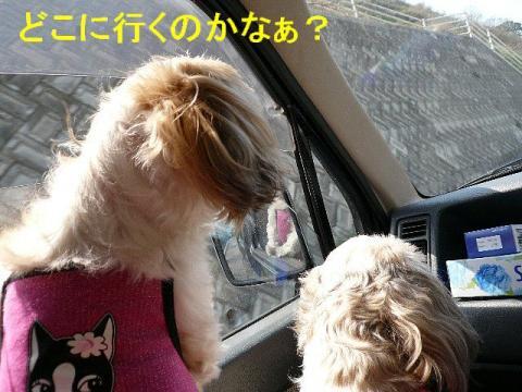 mint_20080407_2