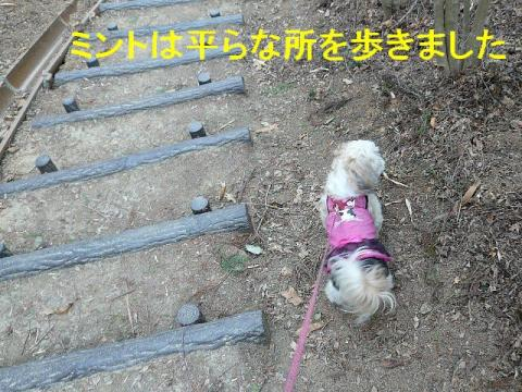 mint_20080407_4