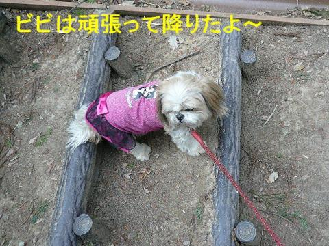 bibi_20080407_1