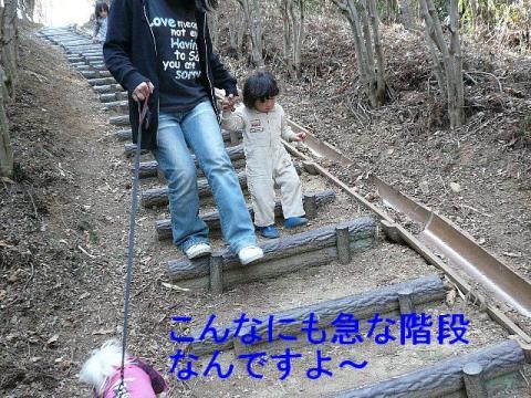 yama_20080407_3