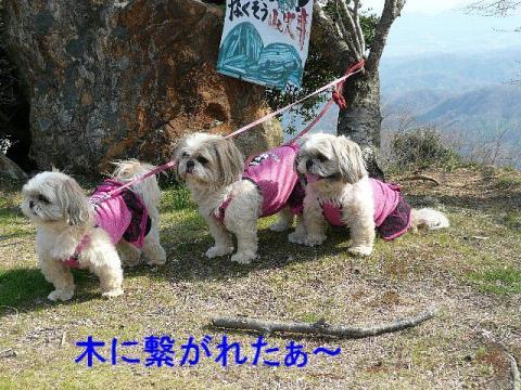 oyako_20080407_1