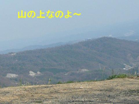 yama_20080407_1