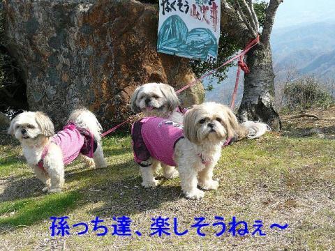 oyako_20080407_2
