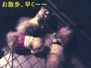 oyako_20060614_1