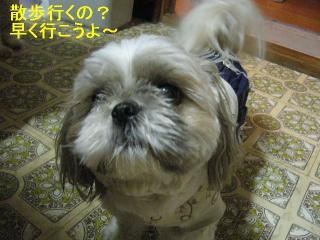 love_20060615_1