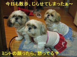 oyako_20060615_1