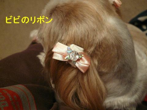 ribon_20080408_3