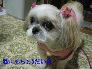 mint_20060622_2
