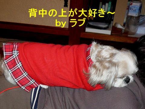 love_20080411_2
