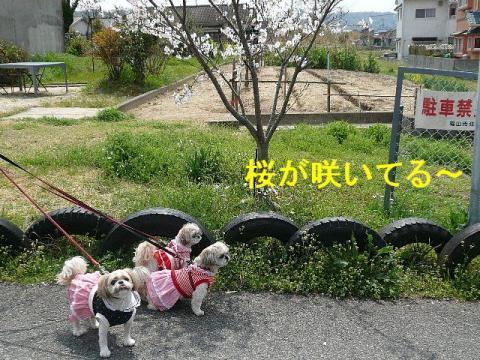 oyako_20080412_2