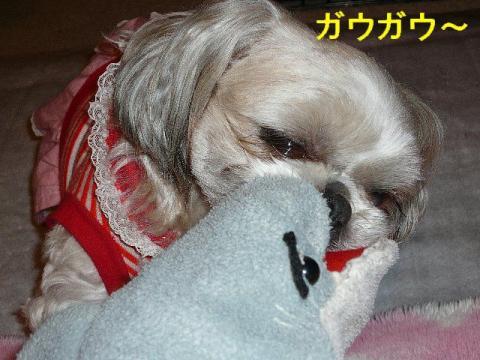love_20080418_3