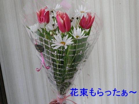hana_20080419_5