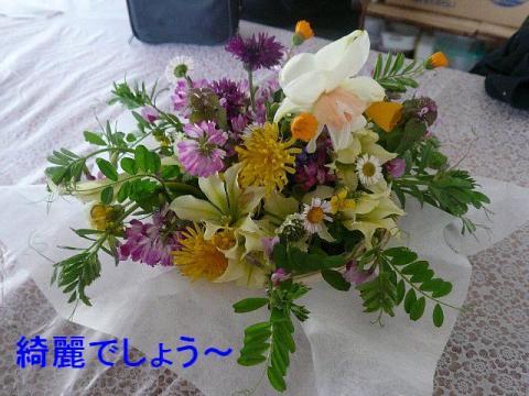 hana_20080419_4