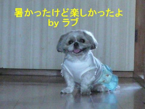 love_20080421_1