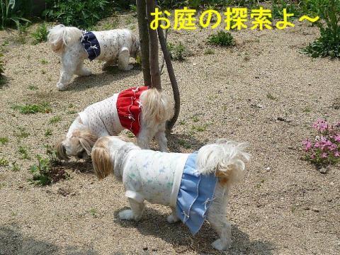 oyako_20080427_1