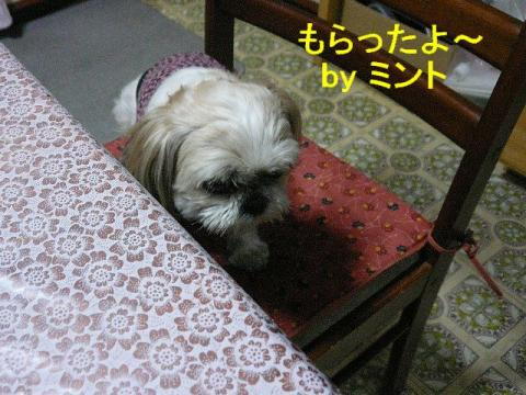 mint_20080508_3