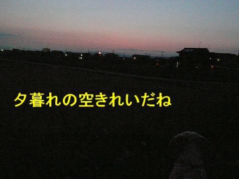 yuuhi_20080514_1