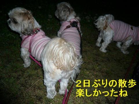 oyako_20080514_2