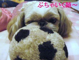 love_20060623_1
