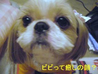 bibi_20060621_1