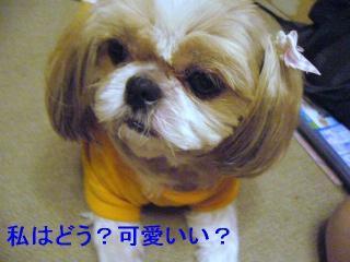 bibi_20060623_1