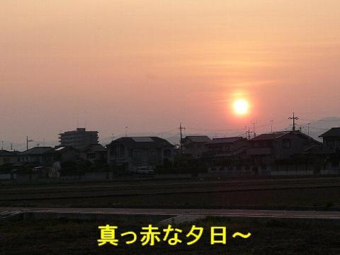 yuhi_20080520_1