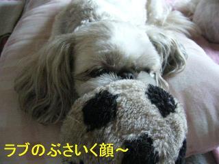 love_20060626_2