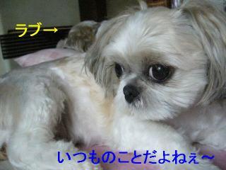 mint_20060626_1