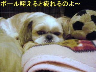 mint_20060627_3