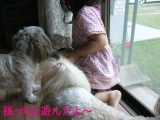 oyako_20060701_1
