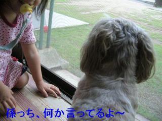 love_20060701_2
