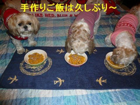 oyako_20080531_1
