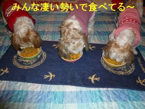oyako_20080531_2