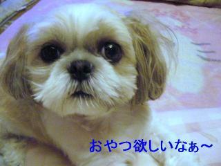 mint_20060706_1