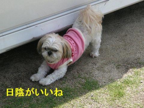 mint_20080602_5