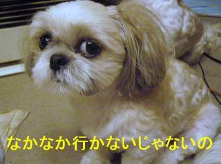 mint_20060707_1