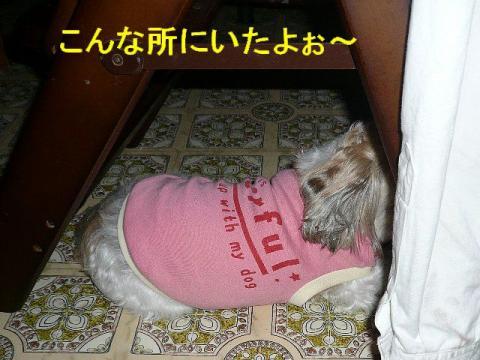 mint_20080601_3