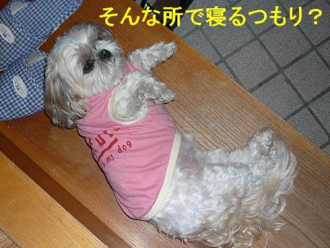 mint_20080601_8