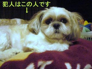 mint_20060711_1