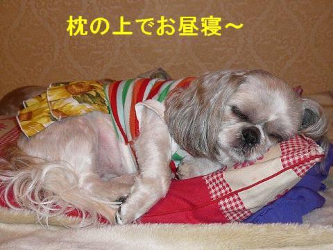 love_20080609_2