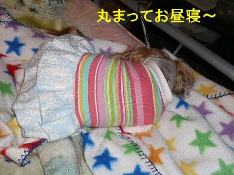 mint_20080609_3
