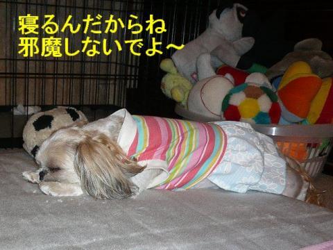 mint_20080609_2