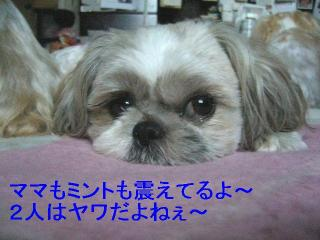 love_20060716_3