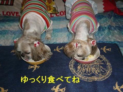 lovemint_20080610_2