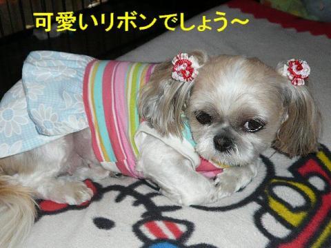 mint_20080610_1