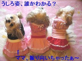 oyako_20060717_1