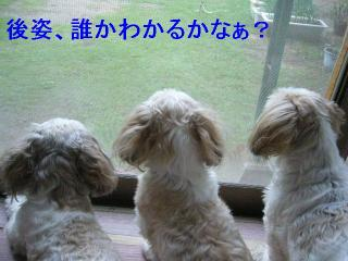 oyako_20060720_1