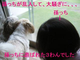 oyako_20060720_3